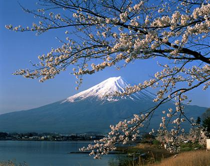 Negeri Sakura