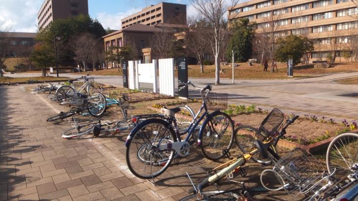 gilig windy campus hiroshima daigaku